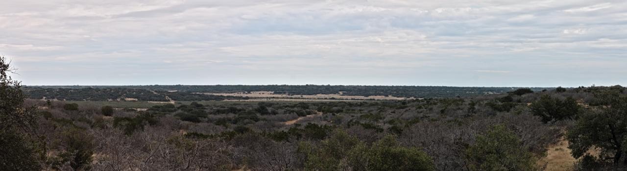 Nature Hike Panorama 4
