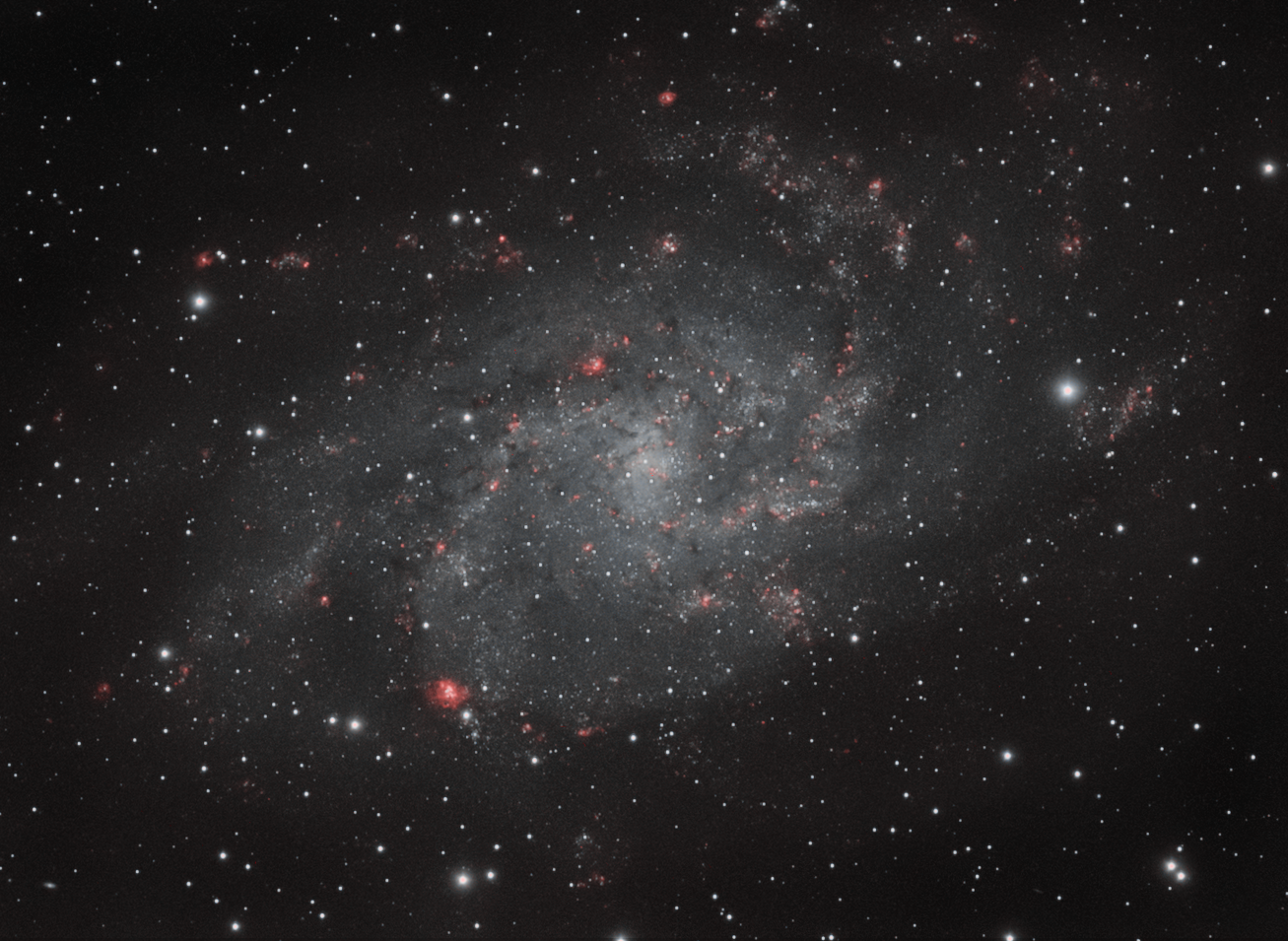 The Triangulum Galaxy (M33)