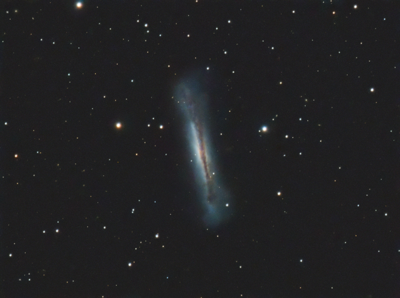 The Hamburger Galaxy (NGC3628)